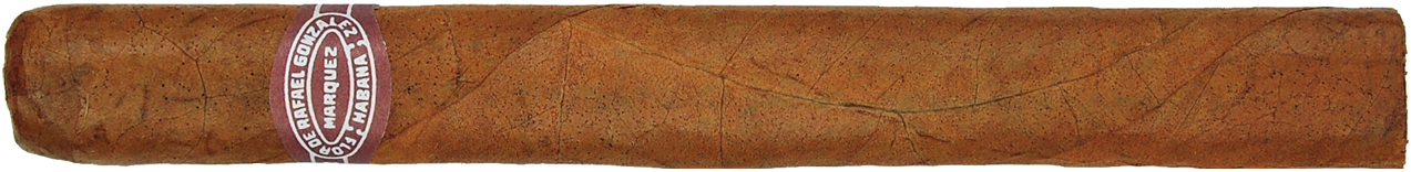 rafael gonzalez panetelaas extra