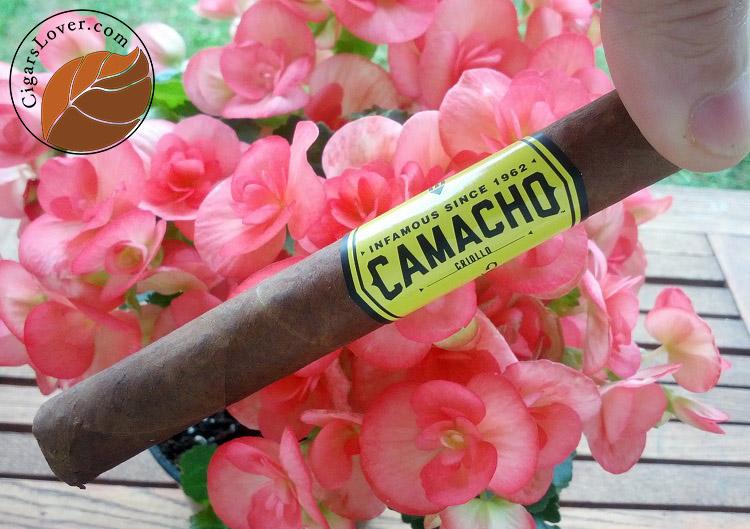 Camacho-Criollo-Corona-1 copy