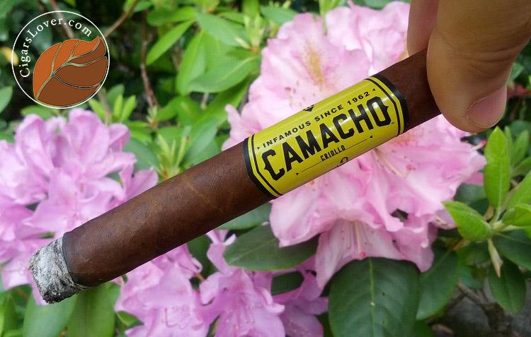 Camacho-Criollo-Corona-2 copy