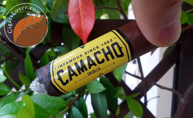 Camacho-Criollo-Corona-4 copy