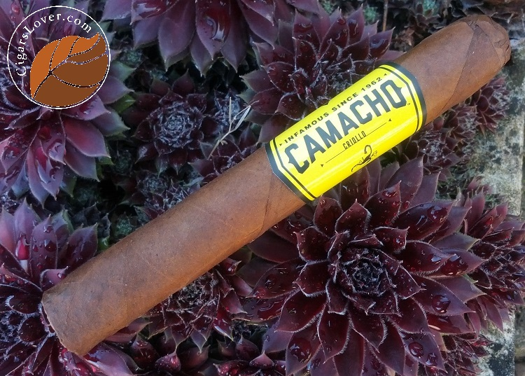 Camacho-Gigante-3
