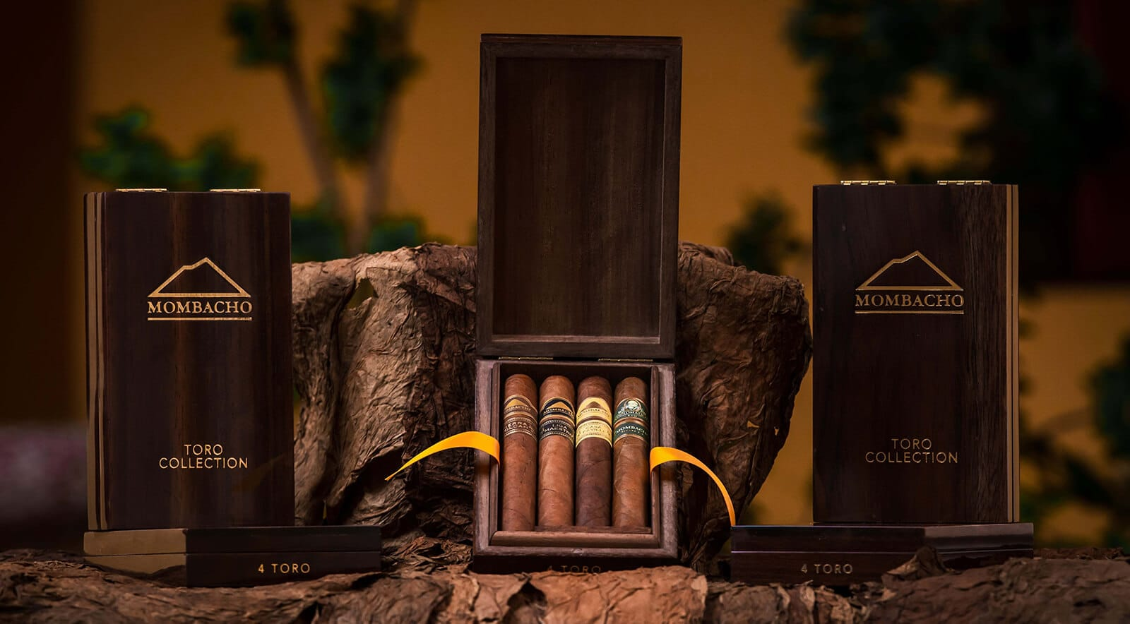 Mombacho Robusto & Toro Collections Gift & Travel Boxes